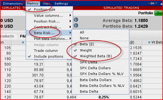 Beta-Weighted Risk Navigator